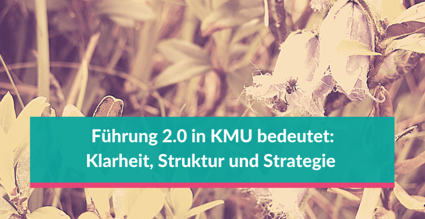 Führung 2.0 in KMU bedeutet Klarheit, Struktur und Strategie